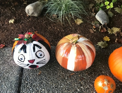 Fall 2018 Pumpkin Painting at the Willows